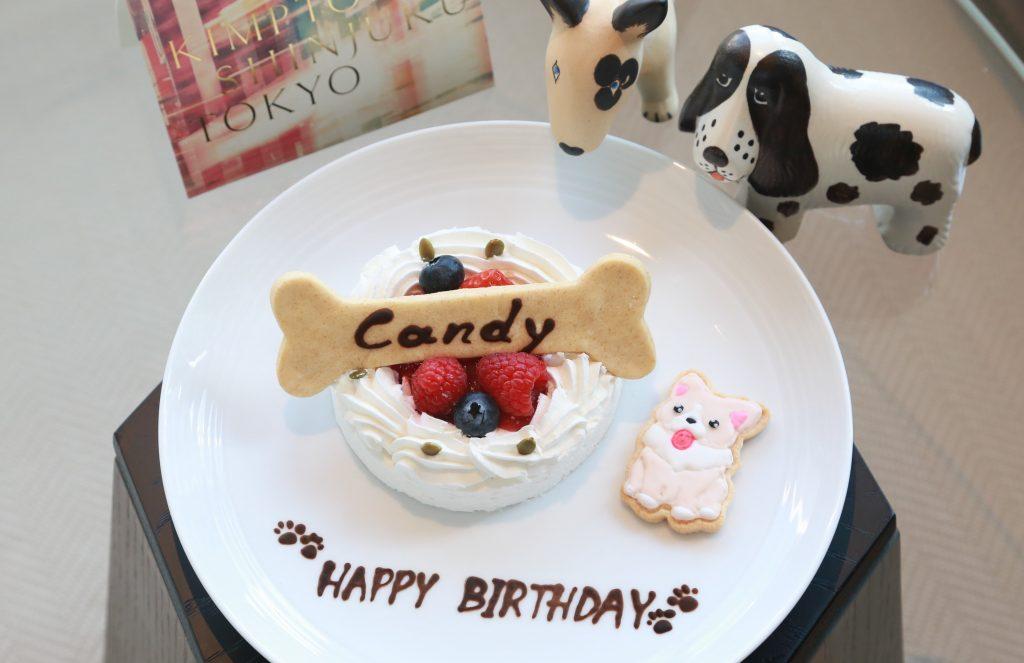 Dog Birthday Cake Image